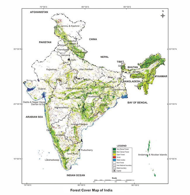 Forest Cover Map