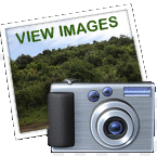 view Images